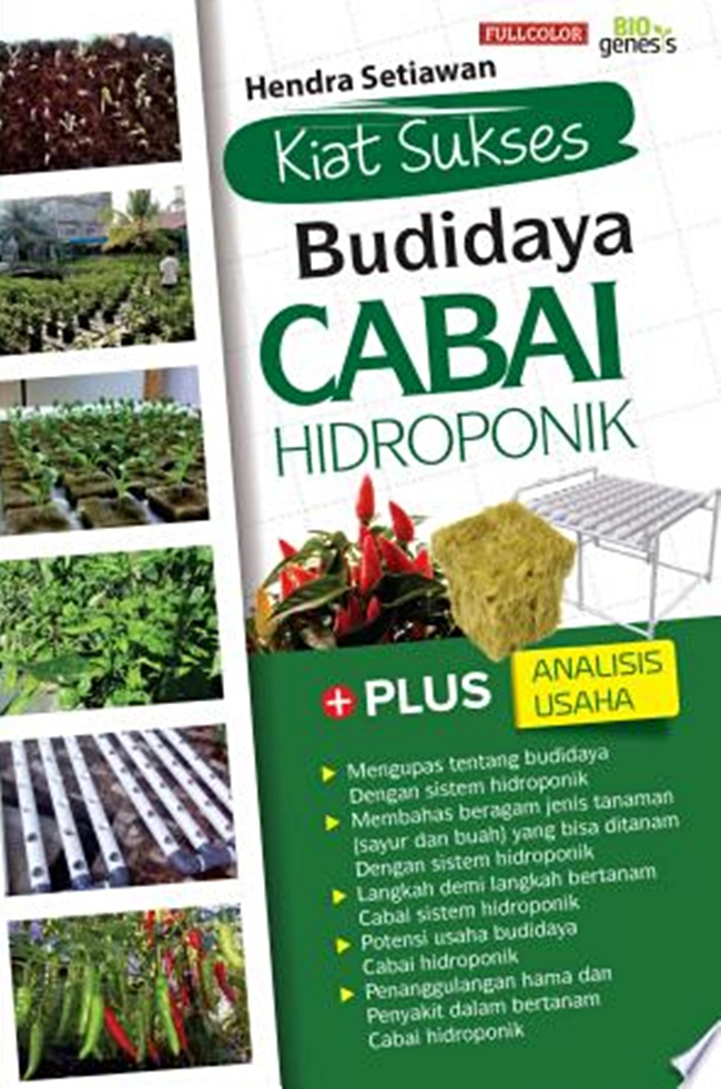 Kiat Sukses Budidaya cabe Hidroponik